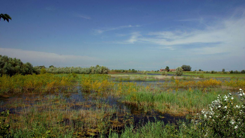 Biodiversità, Terzi: Unione europea assegna 10 milioni alla Lombar