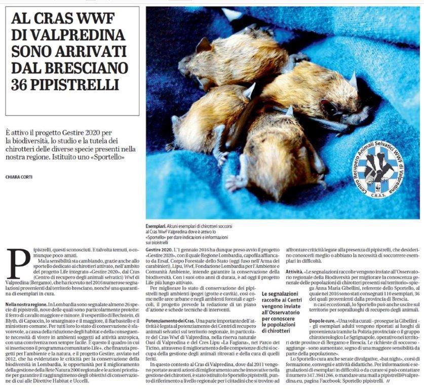 Il-Giornale-di-Brescia-5-febbraio-2017.jpg