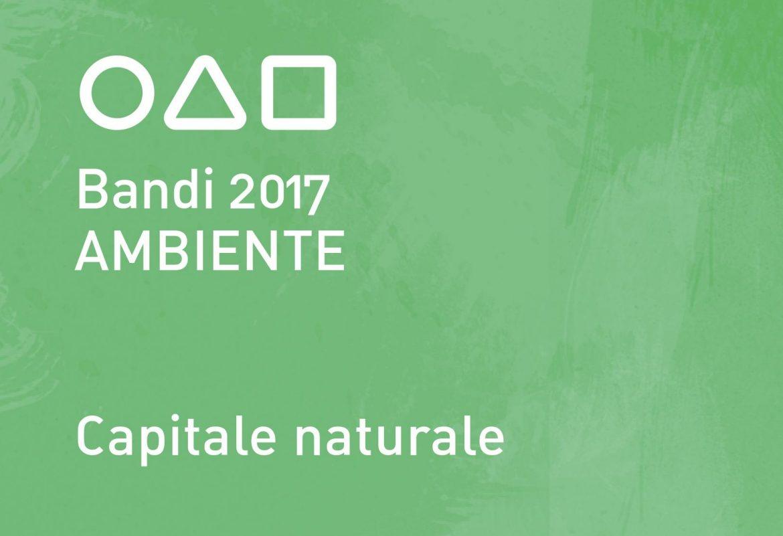 Immagine-Bandi-Ambiente-2017.jpg