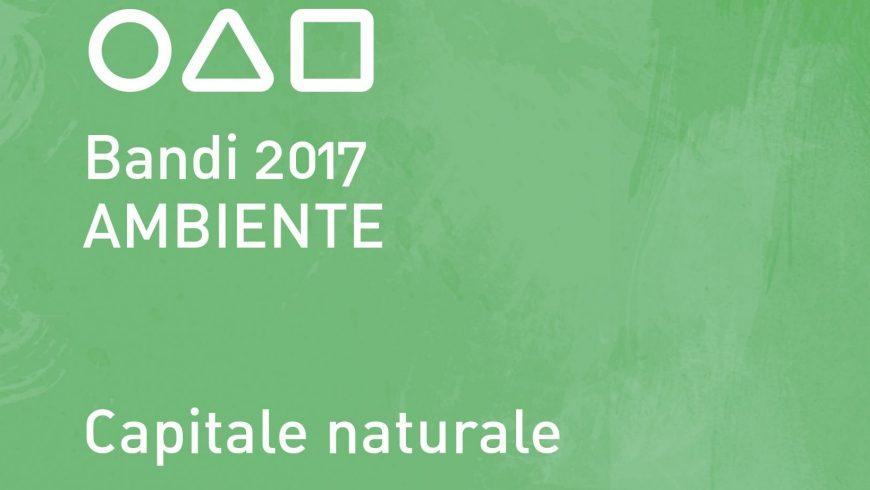 """Fondazione Cariplo, Bando Ambiente 2017 """"capitale naturale"""" per la biodiversità"""