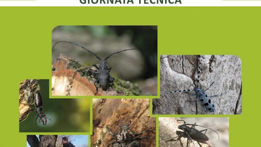 Giornata tecnica del MIPP su presente e futuro del monitoraggio degli invertebrati