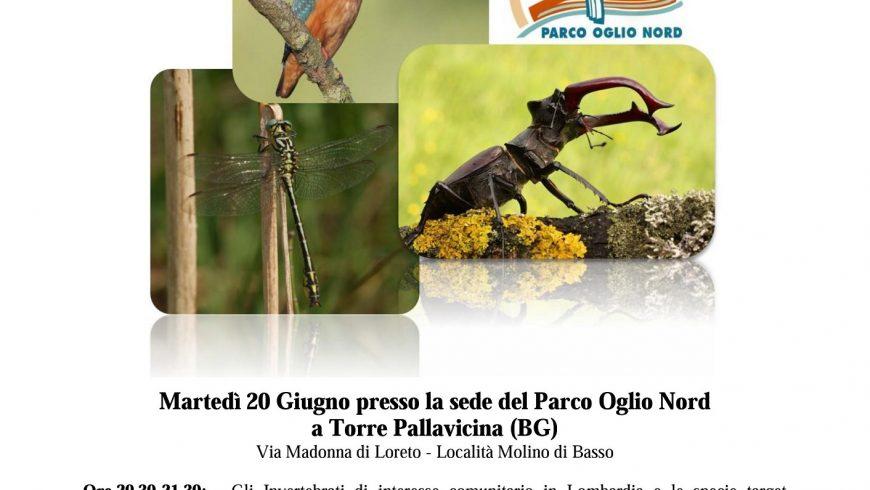 Seminario su monitoraggio di invertebrati e di uccelli di interesse comunitario – Parco Oglio Nord