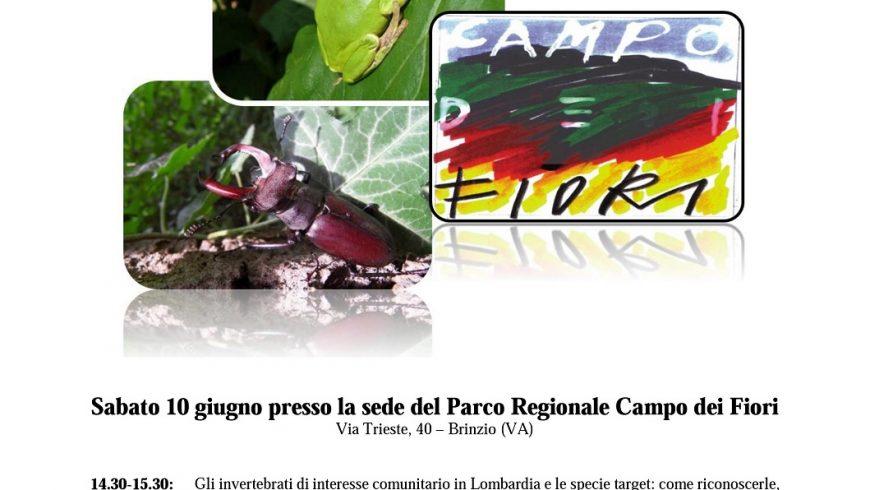 Seminario su monitoraggio di invertebrati, anfibi e rettili di interesse comunitario – Parco Regionale Campo dei Fiori