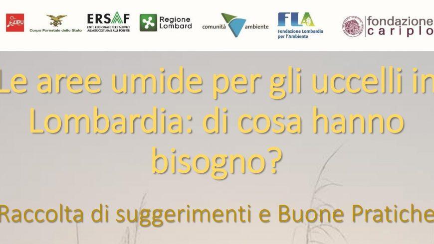 Le aree umide per gli uccelli in Lombardia: i risultati dell'incontro
