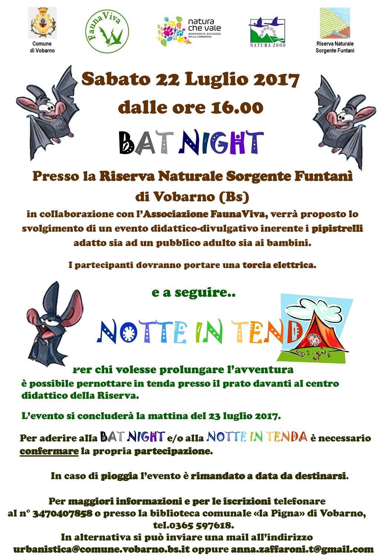 Bat-Night.jpg