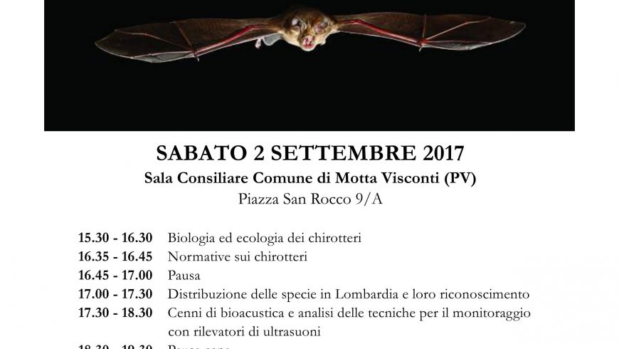 Corso formazione su monitoraggio chirotteri a Motta Visconti