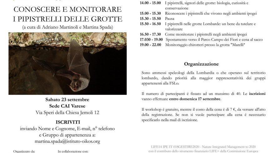Corso formazione per speleologi sui pipistrelli delle grotte a Varese