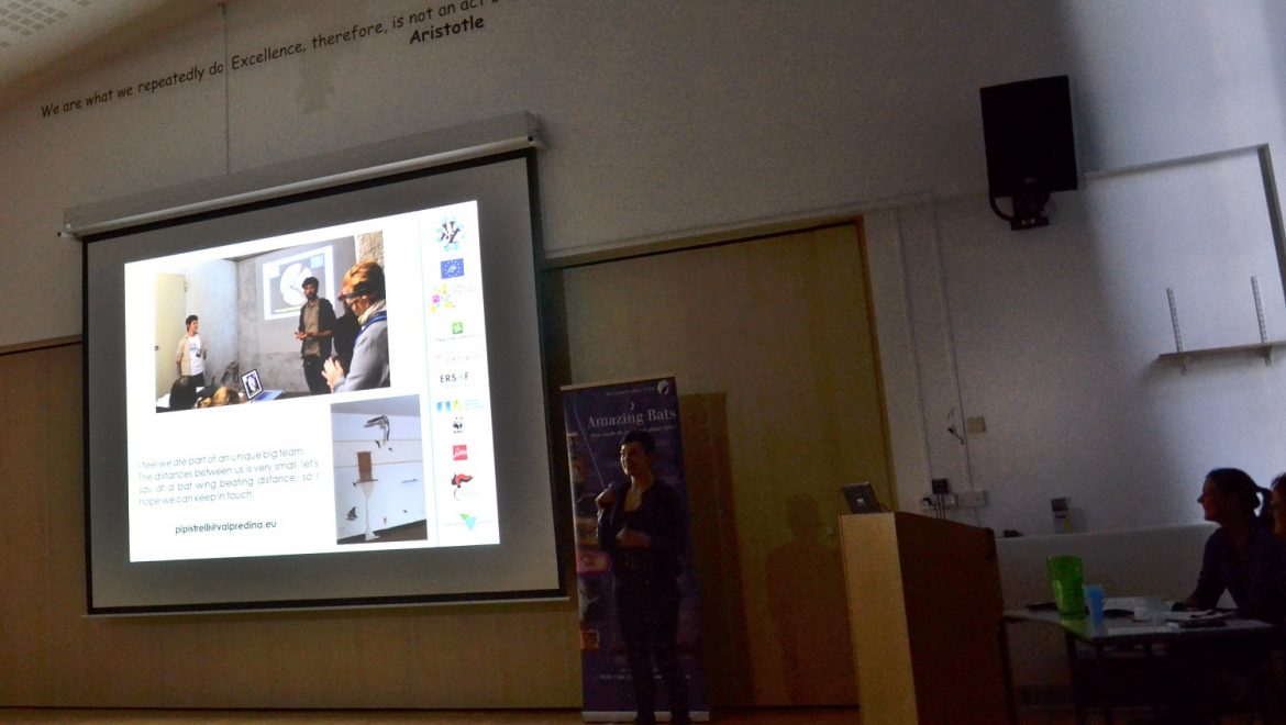 Tutela chirotteri: l'esperienza lombarda alla National Bat Care Conference (UK)