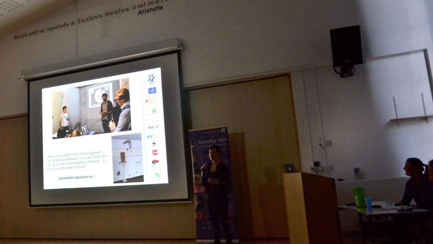 Tutela chirotteri: l'esperienza lombarda alla National Bat Care Conference (UK)