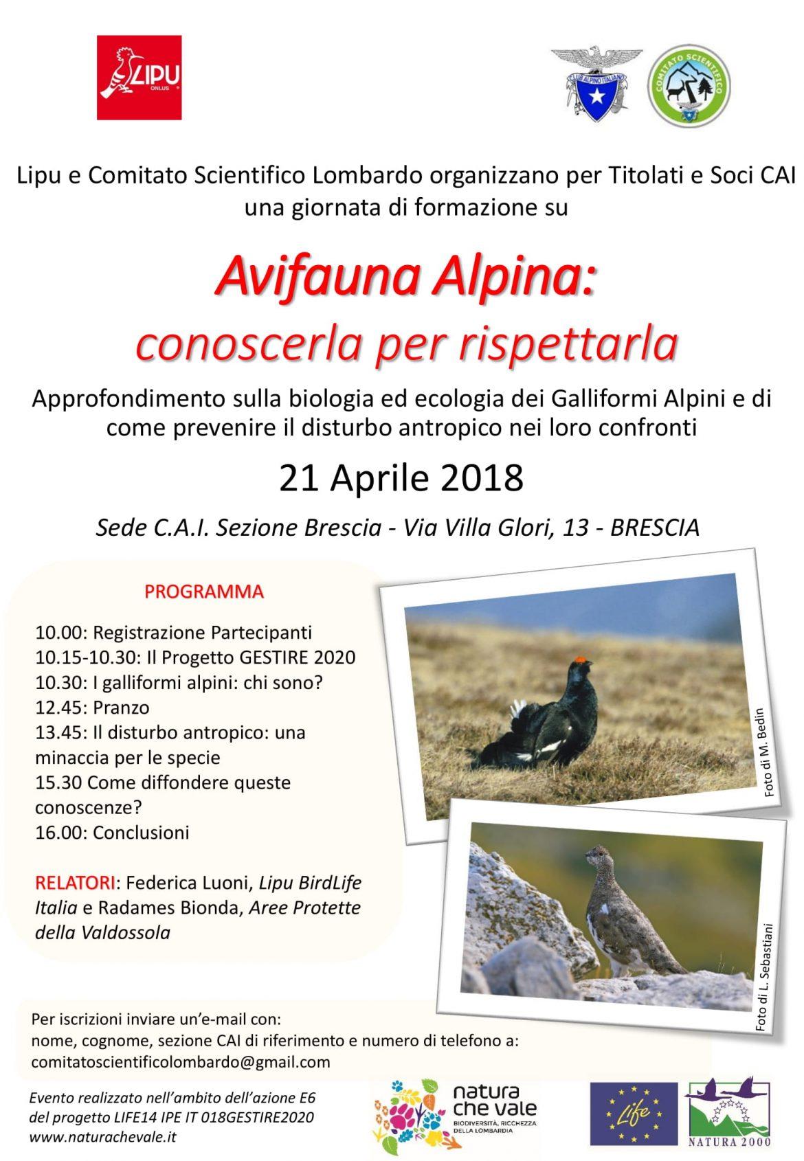 Avifauna-Alpina-conoscerla-per-rispettarla-21-aprile-2018.jpg
