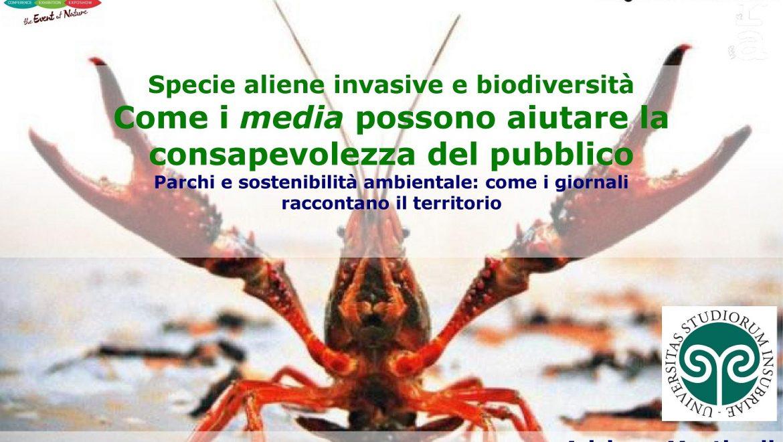 I media e le specie aliene invasive: un approfondimento
