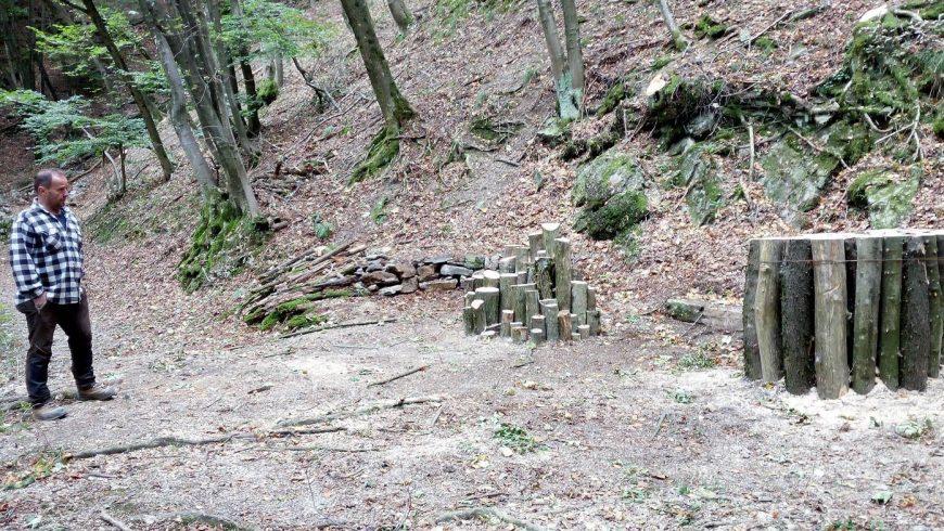 Prime Log Pyramid a favore degli uccelli e degli insetti nelle foreste lombarde