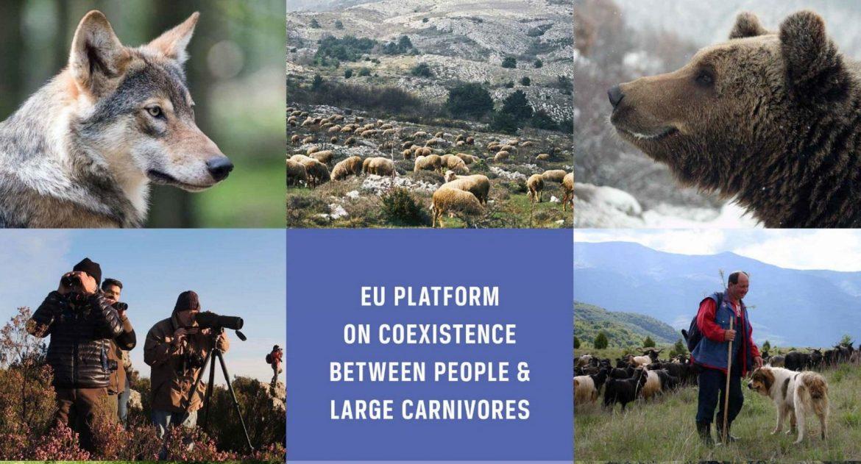 EU-Platform_Workshop-Report_Goslar.jpg