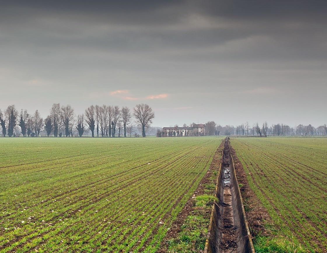 Agricoltura e biodiversità: il 5 febbraio presentazione bando Psr per la formazione di agricoltori, coadiuvanti e lavoratori