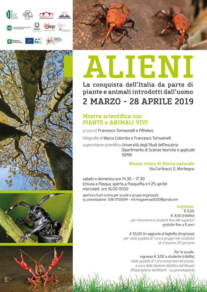 Alieni-Morbegno-2-marzo-19.jpg