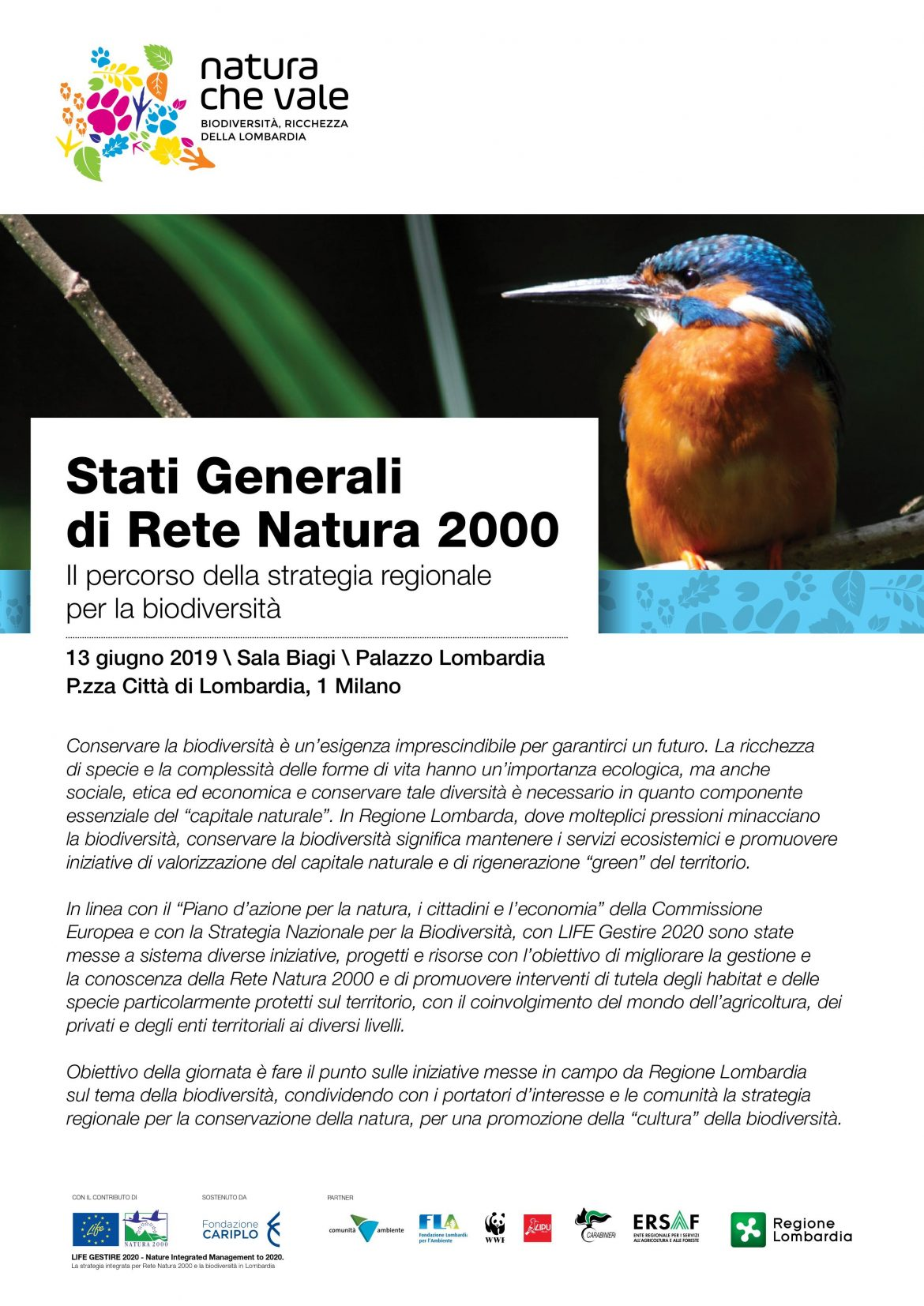2019-Stati-Generali-RN-2000-Programma-frontespizio.jpg