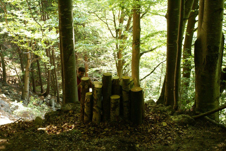 03-VAL-MASINO-Interventi-forestali-2.jpg