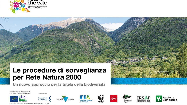 Presentazione delle procedure di sorveglianza per Rete Natura 2000 – 5 novembre a Milano
