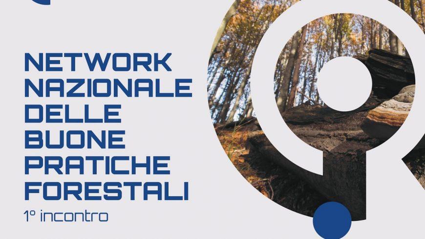 1° incontro Network nazionale delle buone pratiche forestali – Roma