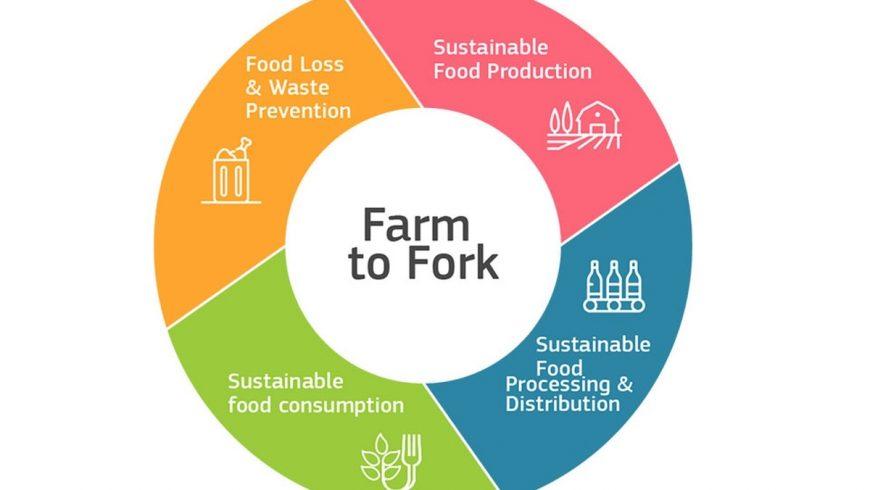 Dal produttore al consumatore: la nuova strategia europea per un sistema alimentare più sano, equo e sostenibile
