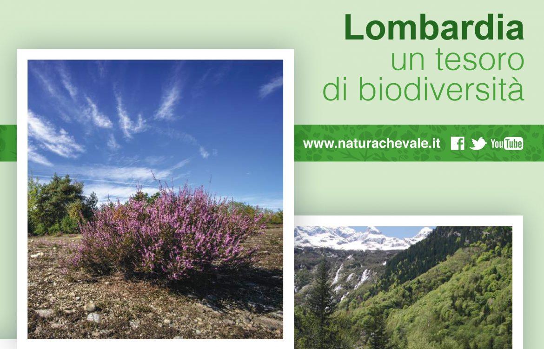 Banner-lombardia-un-tesoro-di-biodiversità.jpg