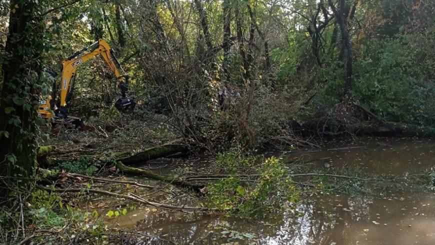 02/11/2020 Parco Adda Nord: gli interventi di sistemazione e ripristino degli habitat