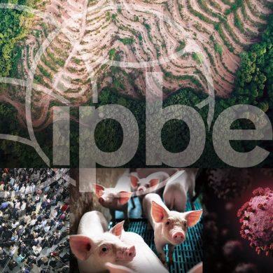 Biodiversità e pandemia: pubblicato rapporto Ipbes