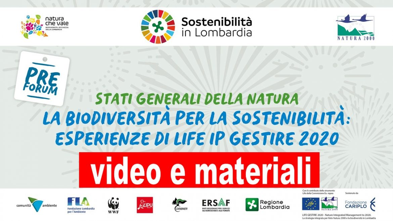Banner-video-materiali-stati-generali-2020.jpg