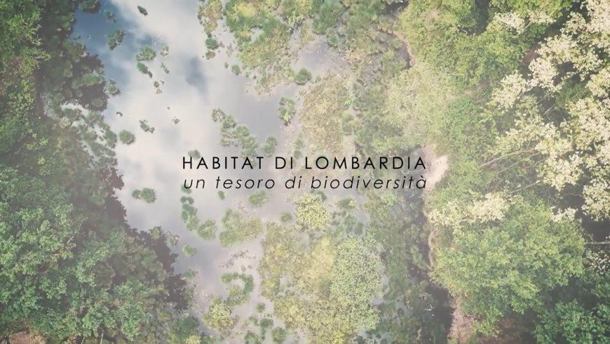 """Pubblicato il video """"Habitat di Lombardia, un tesoro di biodiversità"""""""