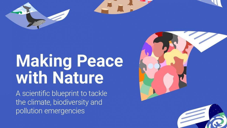"""""""Fare pace con la natura"""": pubblicato il nuovo rapporto del Programma ONU per l'ambiente"""