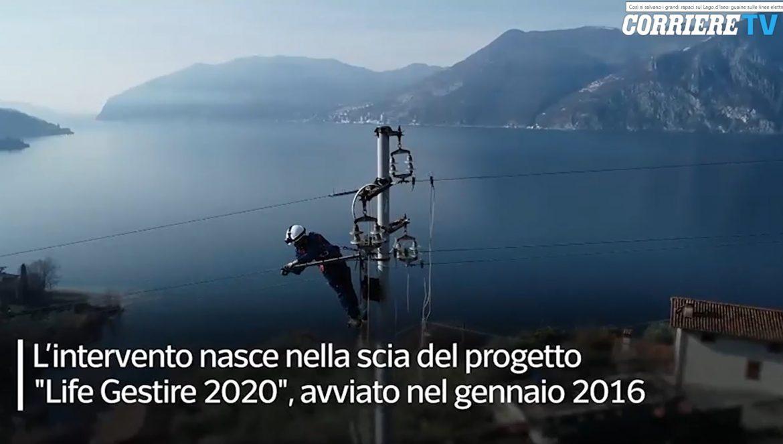 Linee-elettriche-Corriere-Tv.jpg