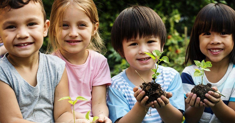 NOV_educazione-ambientale.jpg