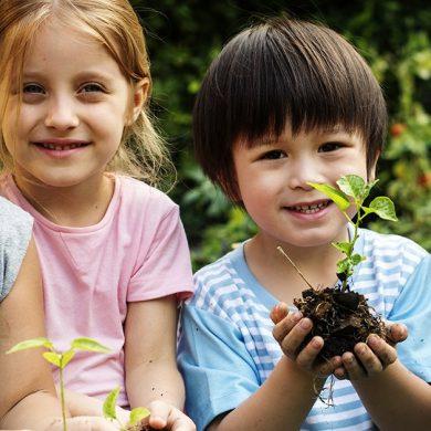 """Educazione alla sostenibilità ambientale nelle scuole: aperto bando Cariplo """"My Future"""""""