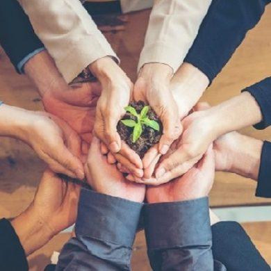 Call for ideas di Fondazione Cariplo per progetti di rilancio occupazionale in chiave green