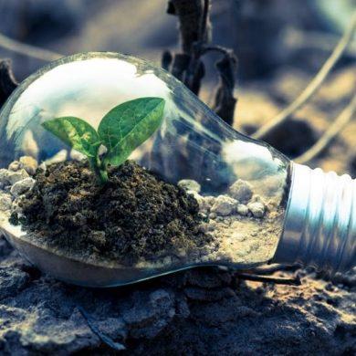 """Transizione ecologica: aperto bando Cariplo """"Effetto ECO"""""""