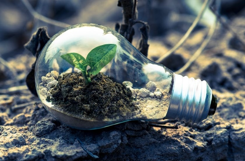 Lampadina-transizione-ecologica.jpg