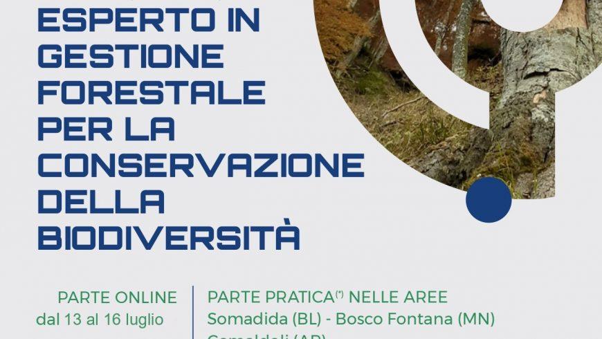 Corso di formazione per esperto in gestione forestale per la conservazione della biodiversità – Online