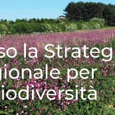 Verso la strategia regionale per la biodiversità: consultazione pubblica aperta fino al 17 settembre