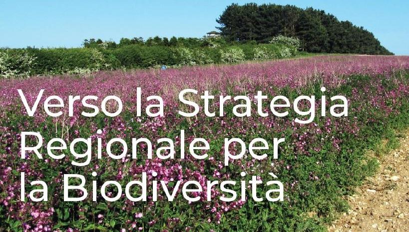 Verso la strategia regionale per la biodiversità: Regione Lombardia apre la consultazione pubblica