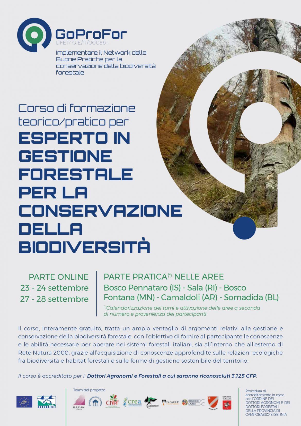 GoProFor-Ultima_possibilita_formazione_online-Locandina-2021_page-0001.jpg