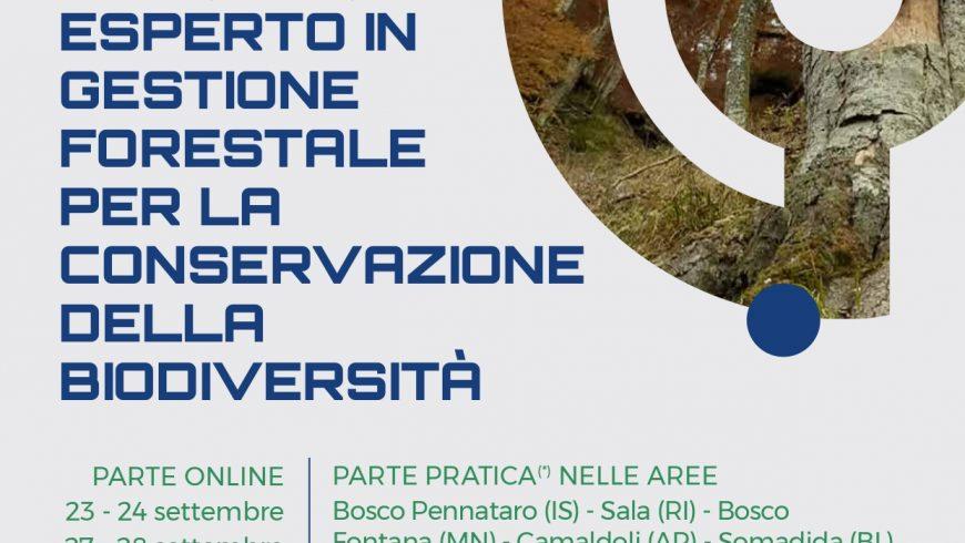 Corso di formazione per esperto in gestione forestale per la conservazione della biodiversità (5. ed.) – Online